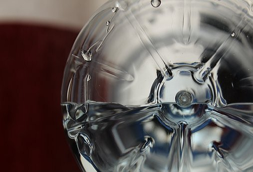 メダカ ペットボトル 稚魚 移動 方法