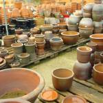 メダカを水槽以外で飼育する方法!プランターや鉢も使える!